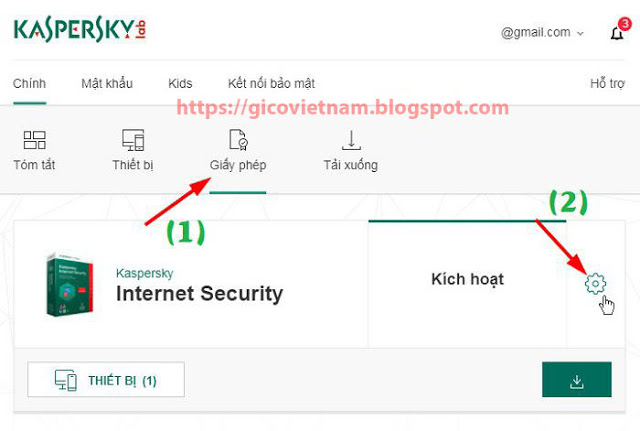 backup cd key kapersky internet security